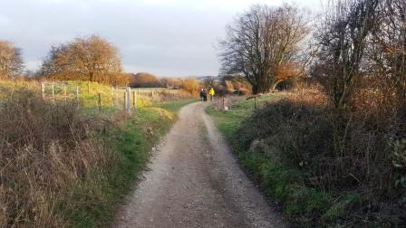The byway across Walbury Hill