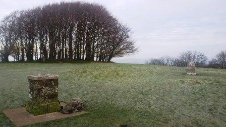 Topograph and trig point
