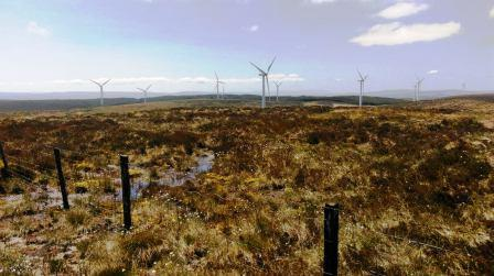 Overlooking a wind farm from the summit