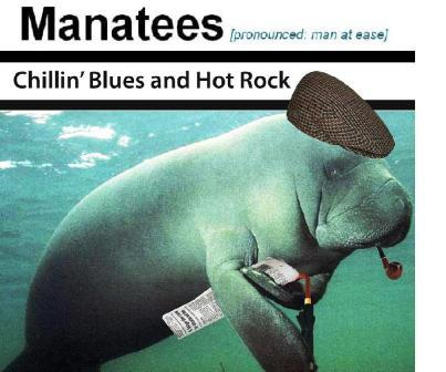 Manatees - 8 to 14 piece blues-rock-jazz-funk-soul band